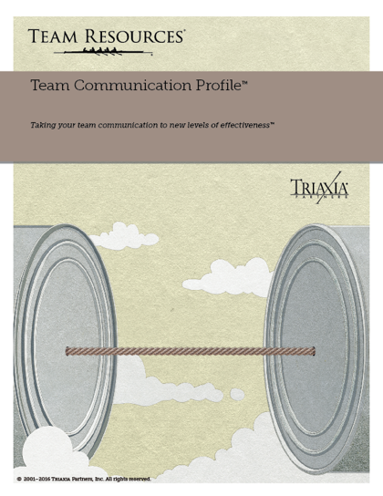 The Online Team Assessment Report for Team Communication