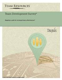 The Online Team Assessment Report for Team Development