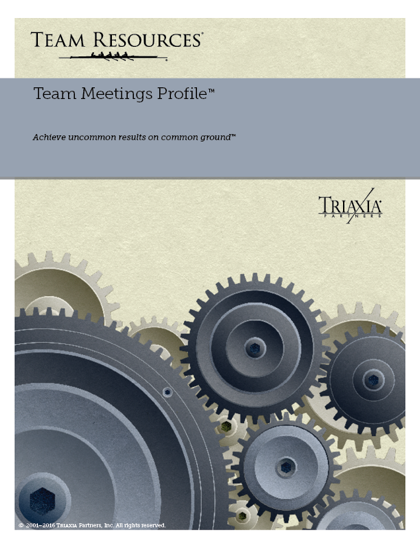 The Online Team Assessment Report for Team Meeting
