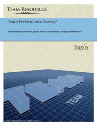 Team Assessment Report for Measuring Overall Team Performance